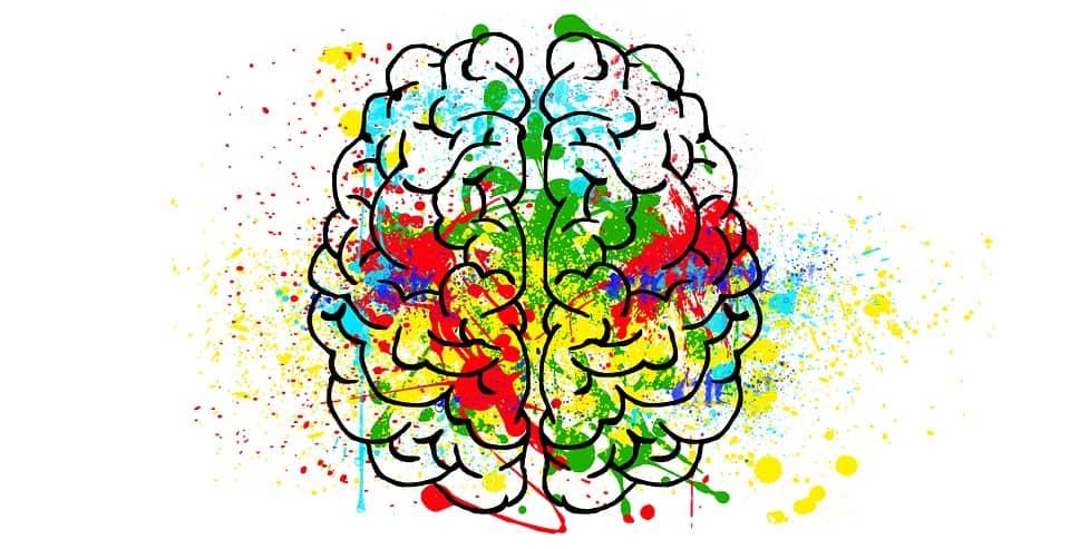 Voeding voor een goede ontwikkeling van je hersenen: Brainfood