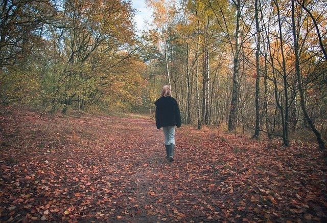 Natuur doet je goed | Digitale excursietours door Nationaal Parken